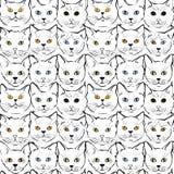 Katachtige snuitenkatjes royalty-vrije illustratie