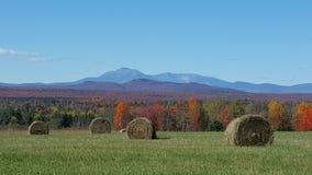Katahdin Mountain Hayfield Royalty Free Stock Photo