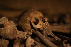 Katakumby Paryż, czaszka/ obraz royalty free