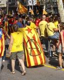 Katalanischer Nationaltag 2014 Lizenzfreies Stockfoto