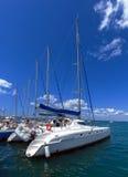 Katamaran i yachtflottan, Cienfuegos, Kuba arkivbild