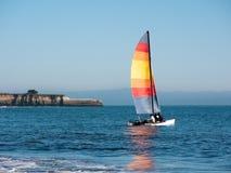 Katamaransportseglingen som är röd seglar Royaltyfri Fotografi