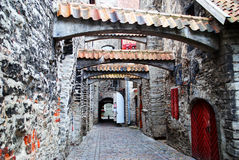 Katariina kaik街道在老塔林 免版税库存图片