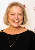Kate Adie Fotos de Stock Royalty Free