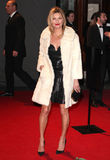 Kate Moss Imagens de Stock Royalty Free