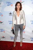 Kate Walsh Stock Images