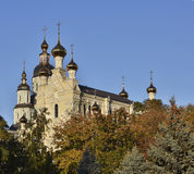 Katedra Święta Dziewica w Moskwa Obraz Stock