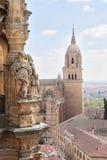 Katedra (Catedral Nueva), Stary miasto Salamanca, Hiszpania. Zdjęcia Stock