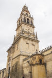Katedra cordoba meczet, Hiszpania Obrazy Royalty Free