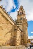 Katedra cordoba meczet, Hiszpania Zdjęcie Royalty Free