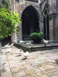 katedra gothic zdjęcie royalty free