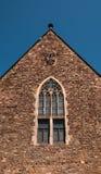 Katedra Magdeburski przy rzecznym Elbe, Niemcy zdjęcia royalty free