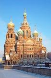 Katedra Nasz wybawiciel na Rozlewającej krwi Zdjęcie Stock