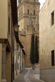 Katedra Salamanca, Castilla y Leon, Obraz Royalty Free