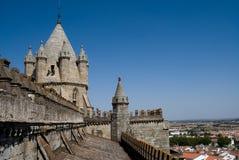 Katedra Sao Francisco, Evora, Portugalia Fotografia Stock