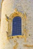 Katedra Trani, architektoniczny szczegół Fotografia Stock