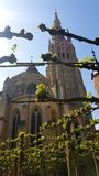 Katedra w Bruges zdjęcie royalty free