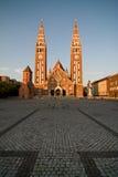 katedra wotywna Fotografia Royalty Free