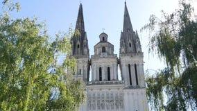 Katedra złości zbiory wideo