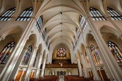 Katedralna bazylika Niepokalany poczęcie Obraz Stock