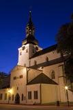 katedralna Mary st Tallinn dziewica Zdjęcia Stock