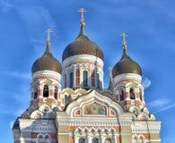 katedralni Alexander kraje Baltic rozpadają się nevsky Tallinn obraz stock
