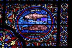 katedralny Chartres szklankę oznaczane Zdjęcie Stock