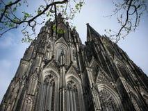 katedralny cologne zdjęcia stock