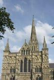 katedralny England Salisbury Wiltshire Obrazy Stock