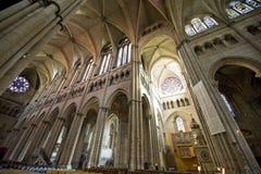 katedralny France Lyon Zdjęcie Royalty Free