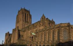 katedralny liverpoolu. Obrazy Stock