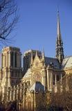 katedralny notre dame zdjęcie stock