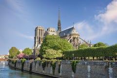 Katedralny notre dame de paris Obraz Stock