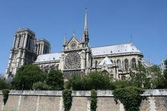 katedralny notre dame Paryża Fotografia Stock