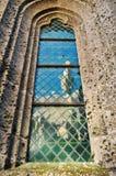 Katedralny okno Obraz Royalty Free