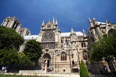 katedralny Paryża Fotografia Royalty Free