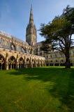 katedralny Salisbury Zdjęcie Royalty Free