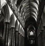 katedralny Salisbury obraz royalty free