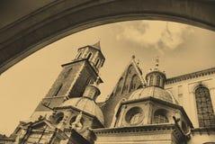 katedralny stary fotografii stylu wawel Obraz Stock