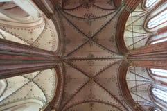 Katedralny sufit Obrazy Stock