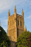 katedralny Worcester Obraz Royalty Free
