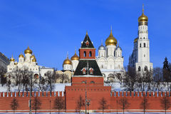 katedry Kremlin Moscow Russia Obraz Stock