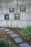 Katharine Hepburn Garden Imagens de Stock