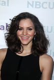 Katharine McPhee at the NBCUNIVERSAL Press Tour All-Star Party, The Athenaeum, Pasadena, CA 01-06-12 Royalty Free Stock Image