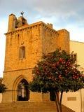 Kathedraal 02 van Faro Stock Afbeeldingen
