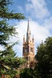 Kathedraal achter de bomen Royalty-vrije Stock Foto's