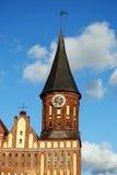 Kathedraal in een kaliningradstad Royalty-vrije Stock Foto