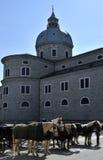 Kathedraal en paarden in Salzburg Royalty-vrije Stock Foto