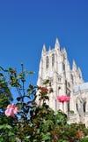 Kathedraal en rozen. Stock Afbeeldingen