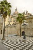 Kathedraal in Jerez Stock Afbeeldingen